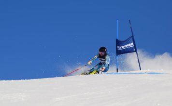 alpin- Anine i farta
